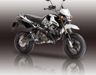 Kawasaki KSR 110 striping warna putih