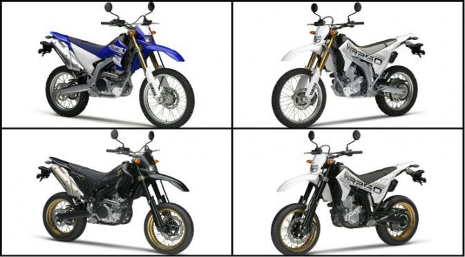 Pilihan warna WR250R