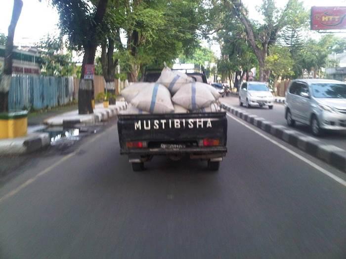 Mustibisha