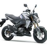 Pilihan warna Kawasaki Z125 Automatic Grey 2