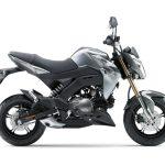 Pilihan warna Kawasaki Z125 Automatic Grey 3