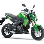 Pilihan warna Kawasaki Z125 Pro Green 1