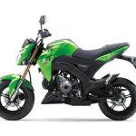 Pilihan warna Kawasaki Z125 Pro Green 2