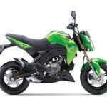 Pilihan warna Kawasaki Z125 Pro Green 3