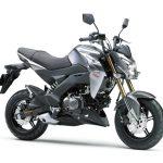 Pilihan warna Kawasaki Z125 Pro Grey 1