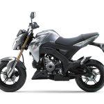 Pilihan warna Kawasaki Z125 Pro Grey 2