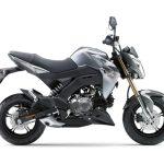 Pilihan warna Kawasaki Z125 Pro Grey 3
