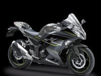 Striping Kawasaki Ninja 250 FI SE ABS LTD Abu 2017